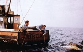 How Often Have You Seen the Movie Jaws?