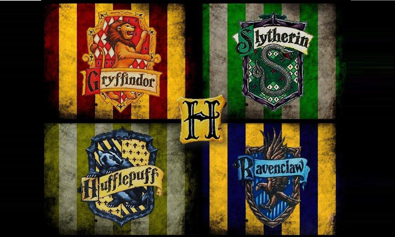 Which Hogwarts House Do You Belong To Heywise