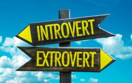 Are You More Introvert or Extrovert?